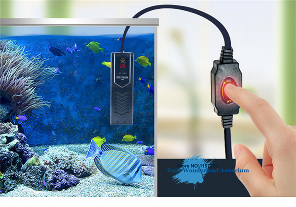 aquarium energiesparen