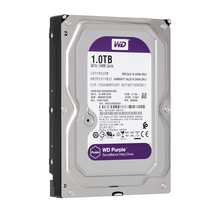 WD фиолетовый 1 ТБ жесткий диск для системы безопасности WD10EJRX HDD 3,5 «SATA DVR CCTV PC приводы наблюдения