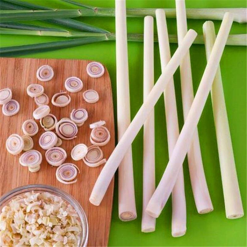 100pcs-LemonGrass-Seeds-Cymbopogon-Seed-Herbs-Vegetable-bonsai-plant-DIY-home-garden (3)