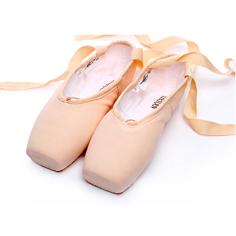 Tiejian Professional Ballet Pointe Shoes Girls Women Ladies Canvas Ballet Shoes With Sponge/Silicone Toe Pads A06a