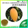 Extrato de Manga Africano padrão DO PBF, O Melhor preço Africano Mango Extrato em pó 900g
