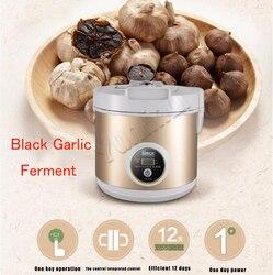 5L elektryczny fermentator do czarnego czosnku domowej roboty cały czarny czosnek automatyczna maszyna do fermentacji czosnku ząbek czosnku DIY SF-G001