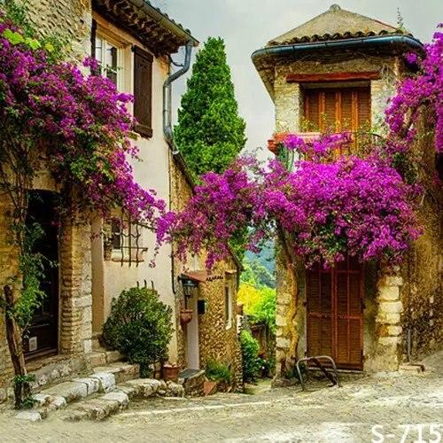 Houses Garden Wonderful Home Marrakech Morocco Jardin Majorelle