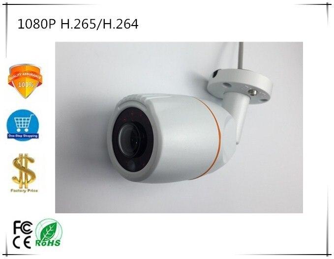Panorama FishEye H 265 1080P IP Bullet Camera Sony IMX307 3516E StarLight IP66 WaterProof 2 0MP
