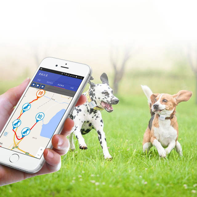 POPSPARK Pet GPS Tracker Waterproof Mini Dog Cat Locator Geo-fence for iOS  Android Web