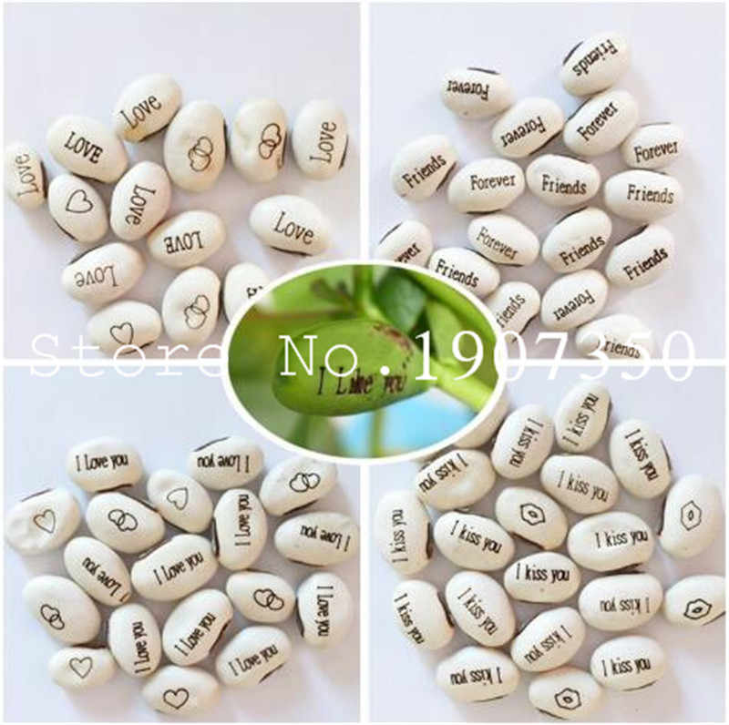 Promotion! 5 pcs Magic beans Magic growth patterns and words of perennial Indoor flowers climbing potted plants New Year's gift