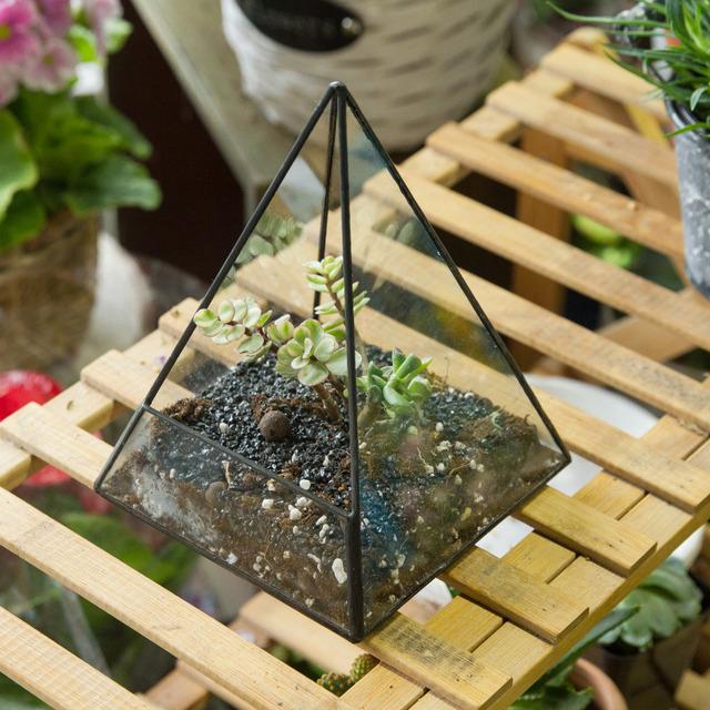 Modern Tabletop Geometric Glass Terrarium Window Sill Box Succulent Flowerpot Pyramid Plants Container Planter Bonsai Flower Pot