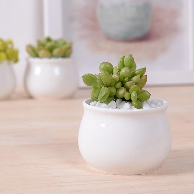 Incroyable 1 Pc Accueil Micro Jardin Décoration Mini Juteux Ronde Plantes Fleurs Vase  Pot De Fleurs Contenant