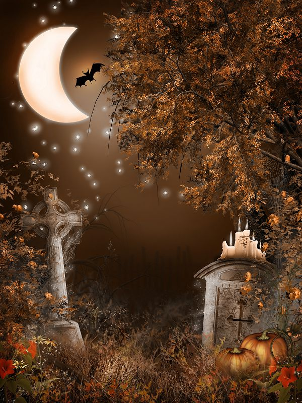 online shop backdrops for photography moon candle pumpkin halloween backdrop photographic background wsj 017 aliexpress mobile - Halloween Backdrop