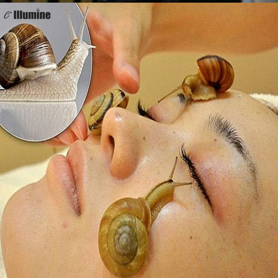 1KG Pure Snail  Slime Mucus Extract 1000ml Same As Snail Crawling On The Face Treatment Beauty Salon Equipment snail extract liquid helix aspersa snail extract