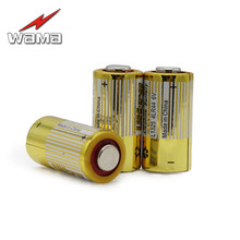 цена на 5pcs/lot Wama 4LR44 Primary Dry Batteries 476A L1325 6V Alkaline Battery Cells Car Remote Watch Toys Calculator Drop Ship