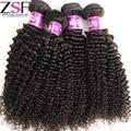 ZSF Hair Company 8A Unprocessed Brazilian Kinky Curly Virgin Hair Afro Kinky Curly Hair Brazilian Virgin Hair Weave Bundles