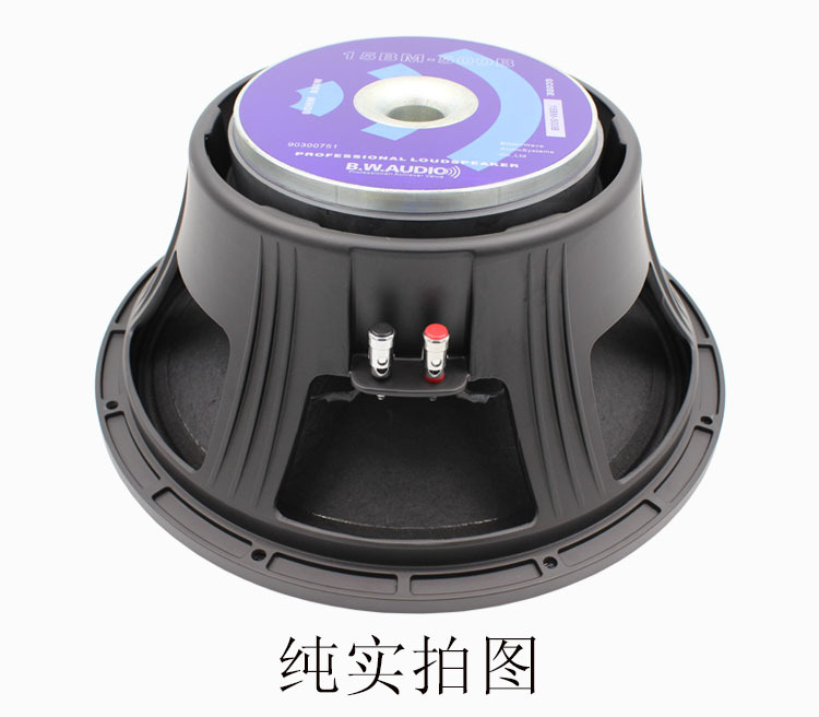 B W AUDIO 500W waterproof high power bass subwoofer raw speaker unit