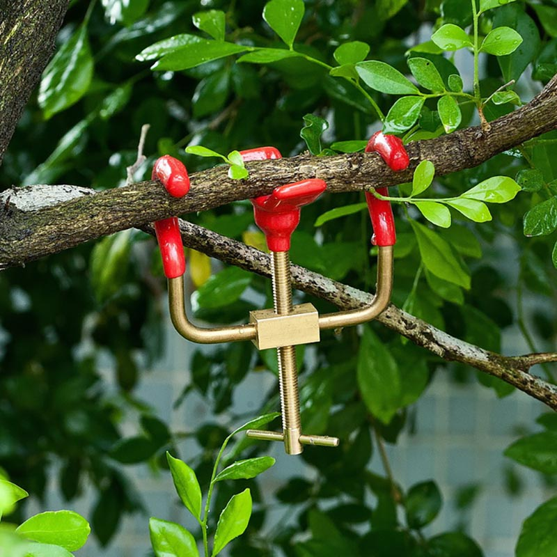 Bonsai Branch Bender Exceptional Wonderful Gyrate Installation Brass Material Made By Tian Bonsai Tools