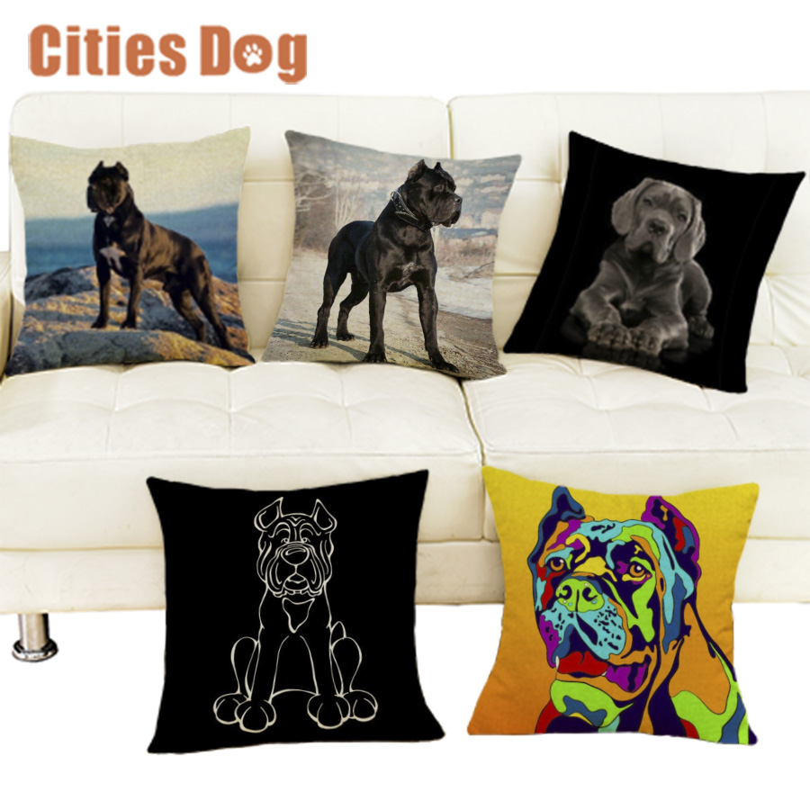 Springer Spaniel RM Breed of Dog Themed Cotton Cushion Cover Perfect Gift