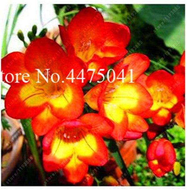 FFD3315E02AB2BEA29D5713168E4DAF8