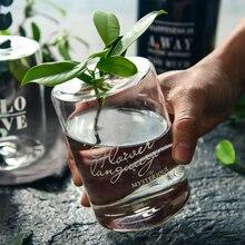 Скандинавская стеклянная банка для хранения, бутылка, скандинавский элегантный стол, минималистичный органайзер для хранения бутылки, гидропонная ваза для растений, домашний декор