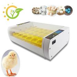 Мини Коммерческих Автоматического инкубатор для домашнего использования яйцо Сеттер-инкубатор Хэтчер птицы, Инкубационных Машина курица