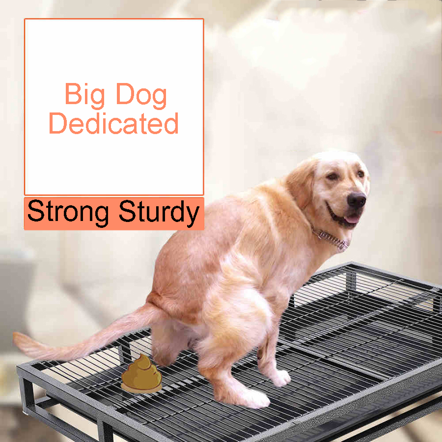 Indoor Large Dog Training Toilet Urine Bet Puppy Plastic Small Box Potty Dogs Training Pads Orinal Portatil Pets Tools 80Z1862