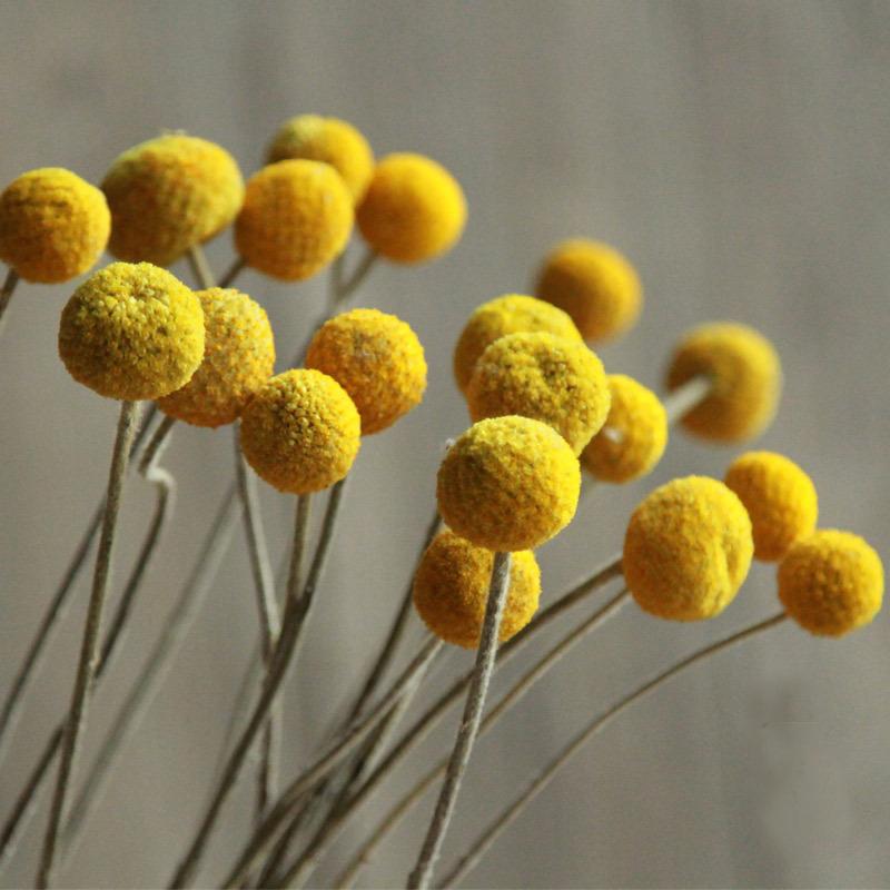unidades de bolas de oro de flores secas en casa bar centro comercial decoracin de