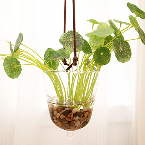 mkono hanging glass vase transparent hydroponic plant