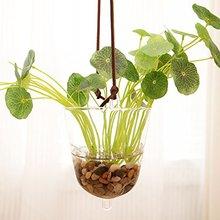 Mkono Hanging Glass Vase Transparent Hydroponic Plant Container Terrarium Flower Pot for Garden Home Indoor Decoration