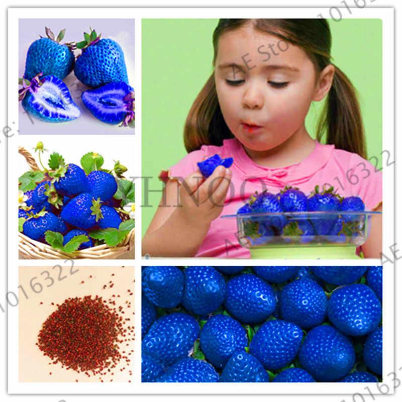 Genuine! 300 pz/borsa blu fragola Bonsai, arrampicata Piante di fragola, albero di fragola, frutta biologica Plantas, per la casa giardino piano