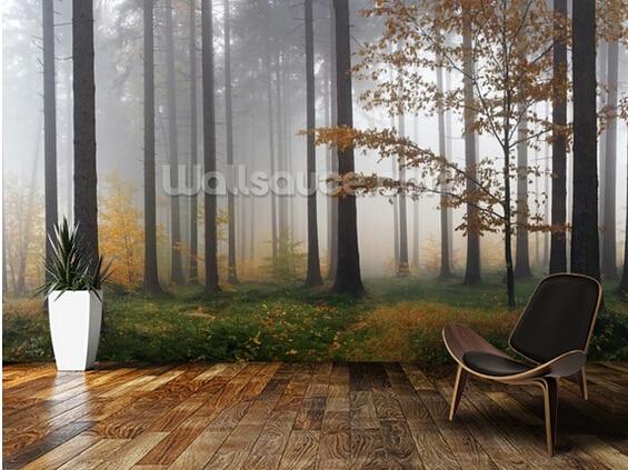 papel pintado natural misty autumn forest d murales de paisajes para el dormitorio