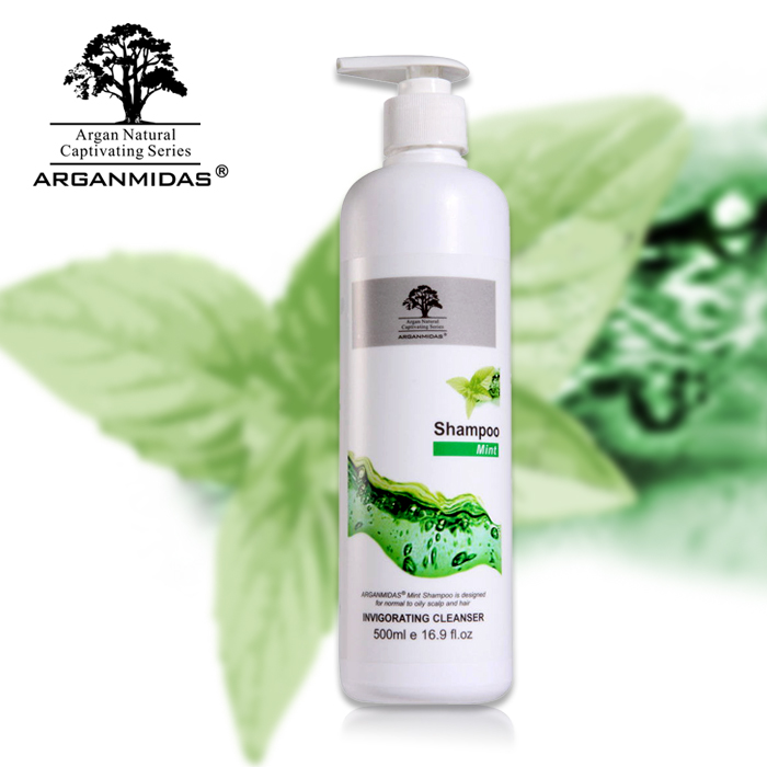 Arganmidas hair straightening hot sale 500ml mint hair shampoo cleaning hair shampoo free shipping sexy hair sulfate free bright blonde shampoo 50