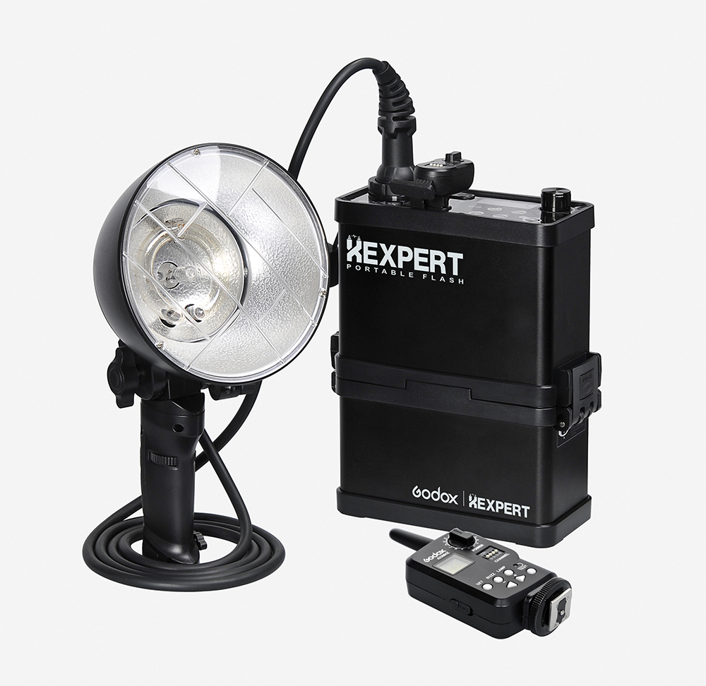 Godox XEnergizer ES600P 600W Portable Outdoor Studio Strobe Flash Light With FT-16 Power-control Flash Trigger цена