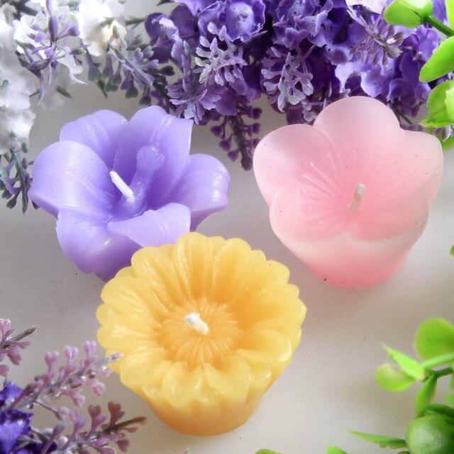 76+ Gambar Bunga Lilin Paling Bagus
