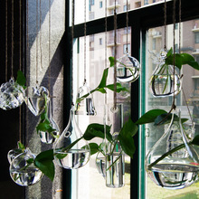 Transparent glass vase home hydroponic brief flower at decoration small bottle