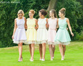 Free Shipping Pastel colour knee length short bridesmaid dresses BD240