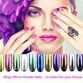 Enfriar Dosis de Colores 12 unids/set Espejo Mágico Polvo Polvo de Pigmento de Uñas Silver Chrome Nail Polvo Láser En Polvo con espejo de Maquillaje cepillos