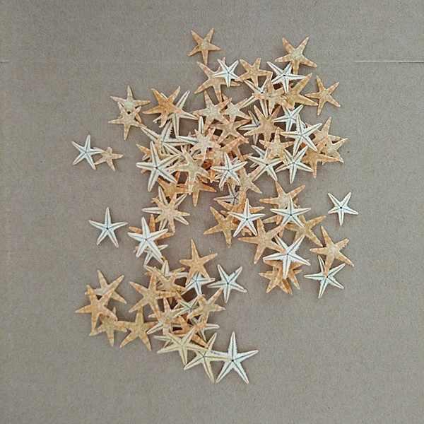 100 шт./лот, 0,5-1 см, 1-2 см, 2-3 см, мини-Морская звезда, ремесло, украшение, природные поделки, морские звезды, сделай сам, пляжный домик, Свадебная вечеринка