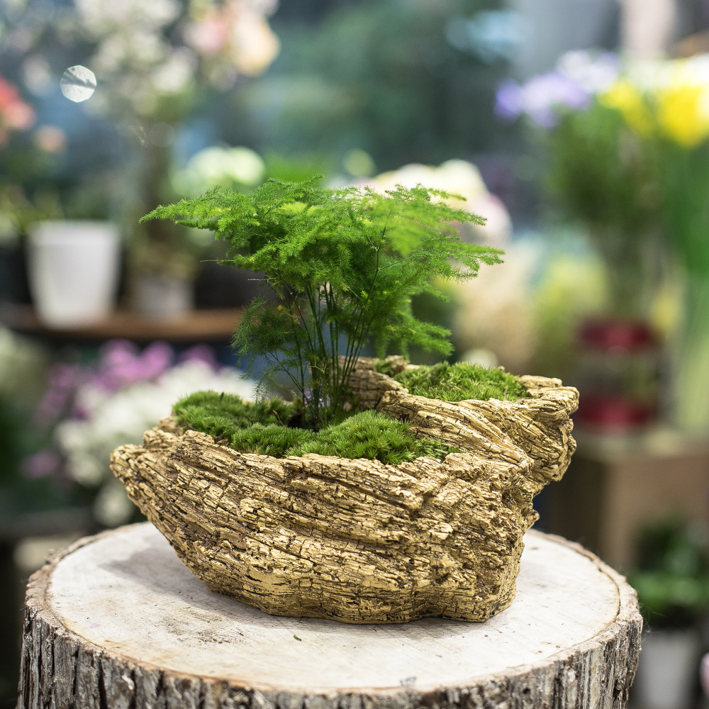resin artificial twisted driftwood flower pot sculpture succulent planter 2 pots rustic trunk