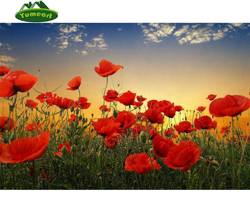 YUMEART Needlework Diamond Embroidery Red Poppies Flowers Magic Diamond Cross Stitch Crystal Mosaic Kits Home Furnishing YHAll