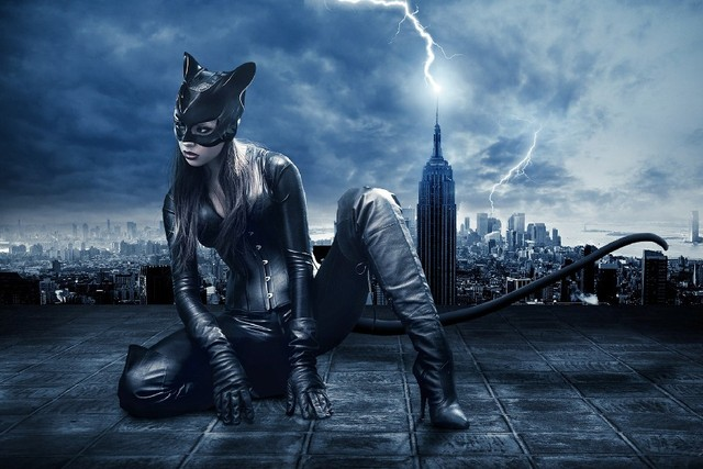 Diy Frame Catwoman Movie Poster Silk Fabric Poster Print Picture For