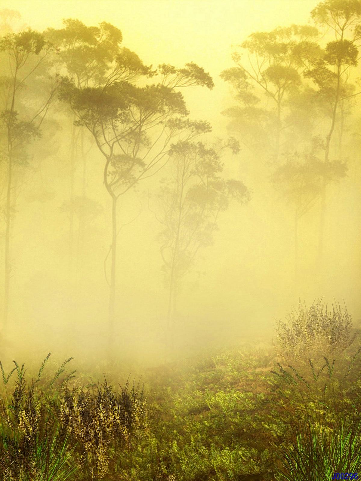 LIFE MAGIC BOX 원더 랜드 150x200cm 인기있는 배경 화면 아름다운 사진 배경 숲 사진 배경 J00296