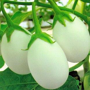 100 шт. Семян Томата Белый Томатный Овощной Фрукты Lycopersicon Esculentum Бесплатная доставка