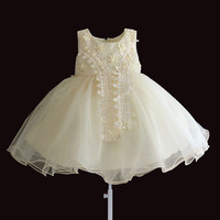 Hetiso Brand Toddler Girls Princess Wedding Dresses Baby Girl 1 Year Birthday Party Clothes Lace Flower