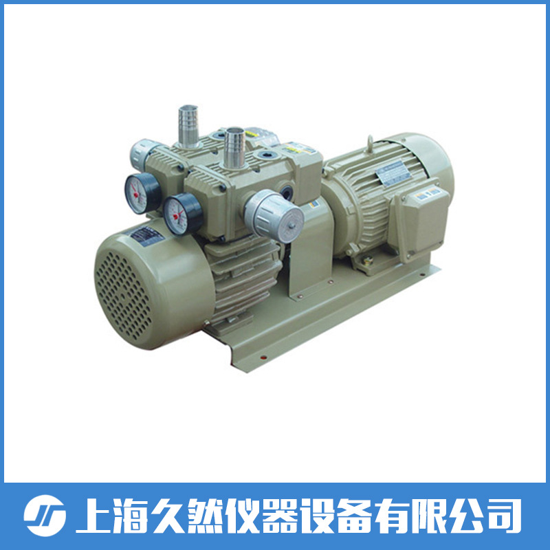 Oil-free vacuum pump WYB60-P-VB-03 printing and packaging standard type WYB single pump Orion manka care 110v 220v ac 50l min 165w small electric piston vacuum pump silent pumps oil less oil free compressing pump
