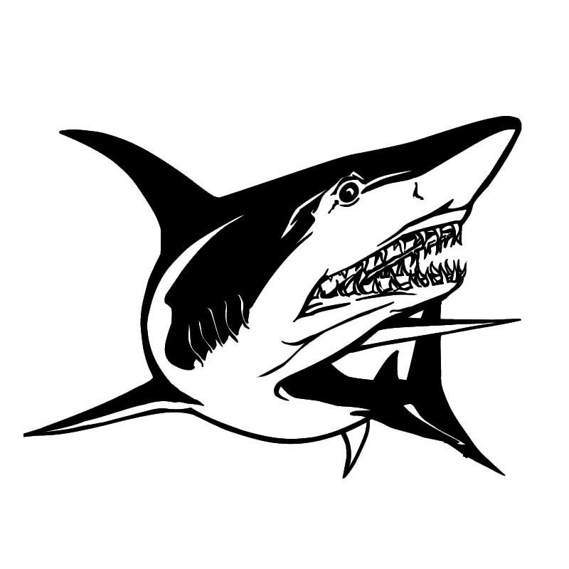 19.8*14.5 CM Divertido Tiburón Styling Car Sticker Decal Coche de Moda Personali