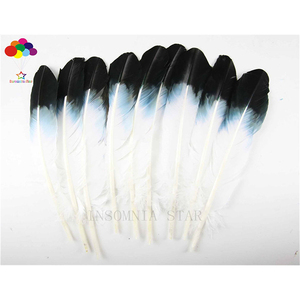 10pcs 100% natural Dyed Turkey feather 30-40cm/12-16inch black and white for Diy carnival costume mask headdress(China)