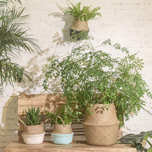 Seagrass Wicker Basket Wicker Basket Flower Pot Folding Basket Dirty Basket storage organizer(China)