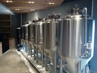 1 BBL/2 BBL/3 BBL Stainless Steel Conical Fermenter / Unitank Jacketed with Top Manway