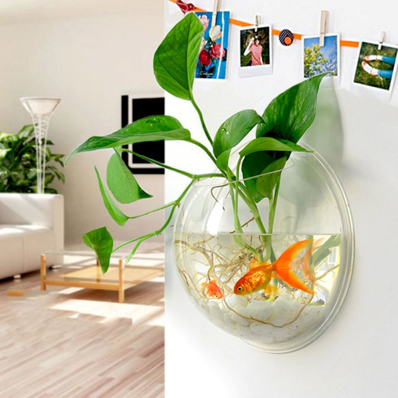 3 Size Transparent Acrylic Wall Plants Hanging Wall Aquarium Bowls