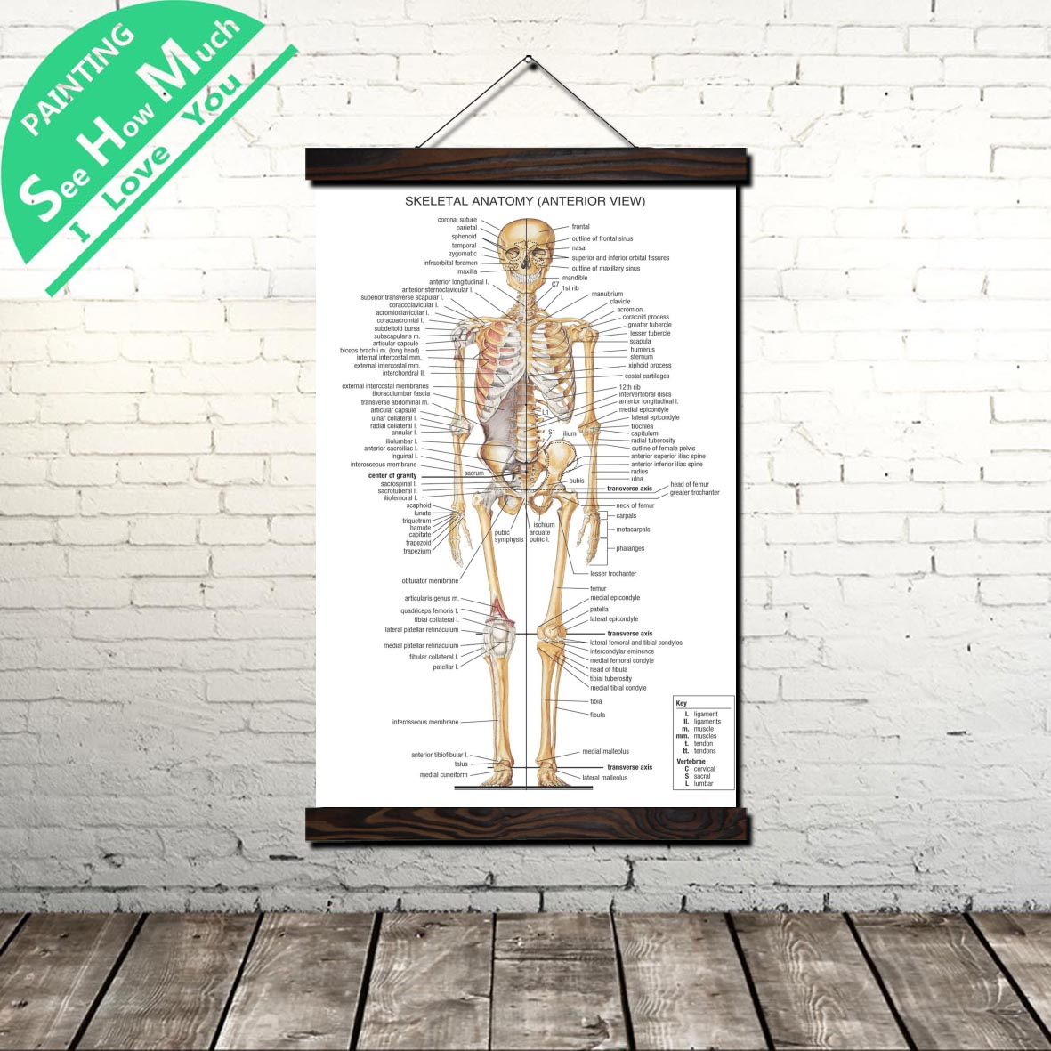 Skeleton System Human Scroll Painting Canvas Vintage Poster and Prints Wall Art Pictures Bedroom Farmhouse Decoration