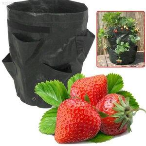 Image 1 - 펠트 천/PE 꽃 재배 딸기 야채 재배 성장 가방 정원 용품 딸기 컨테이너 성장 공예