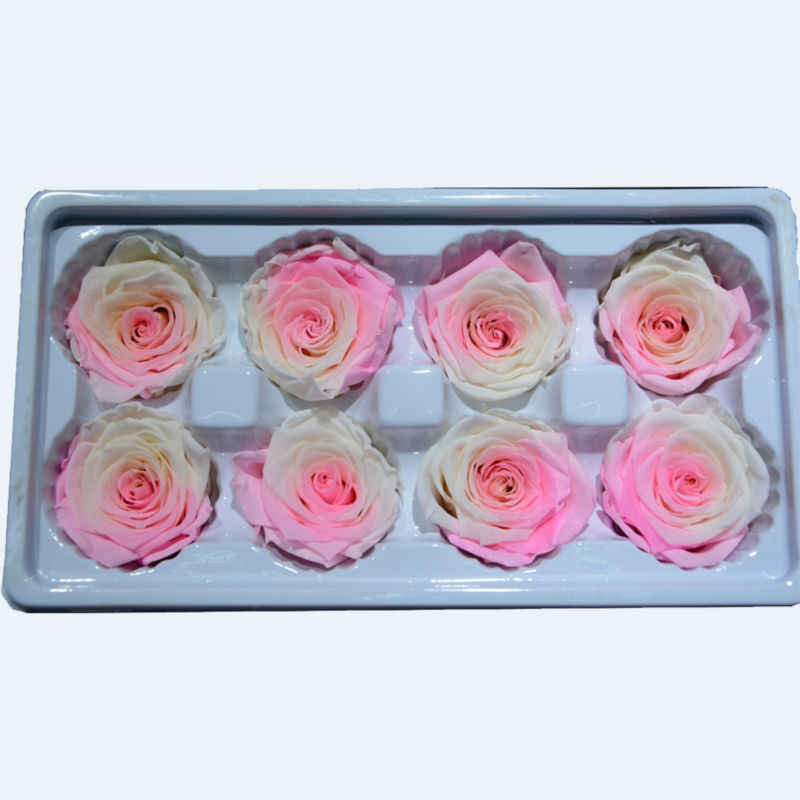 Eternal Preserved Rose Rainbow Multicolor Flower Diy Decoration